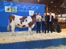 Salon International de l'Agriculture 2015