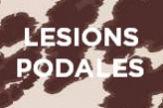 Lesions podales, session d'harmonisation