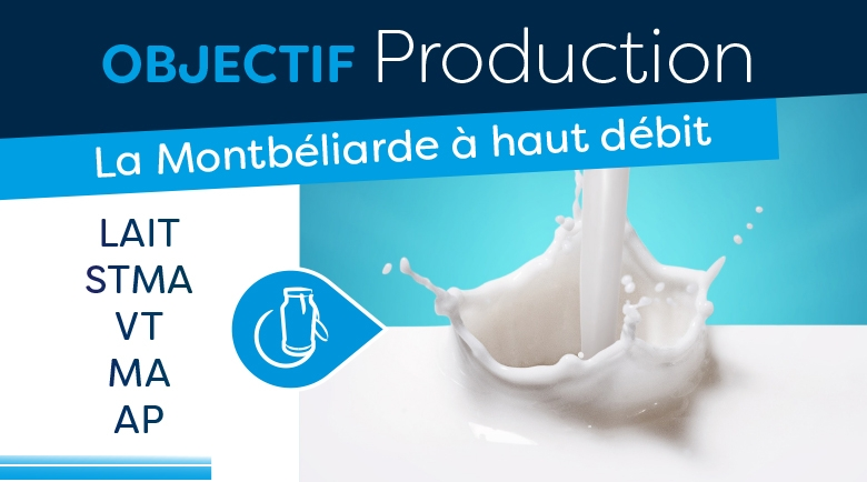 Objectif production